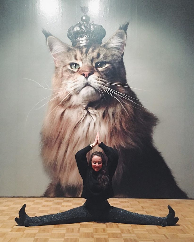 Cat Yoga it is! catyoga catlady yogaart